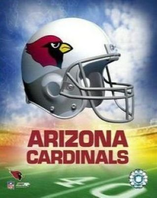 Arizona Cardinals NFL 8x10 Photograph Team Logo and Football Helmet Collage