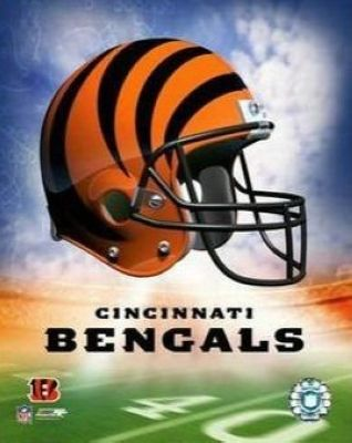 Cincinnati Bengals NFL 8x10 Photograph Team Logo and Football Helmet Collage