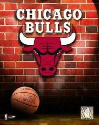 Chicago Bulls NBA 8x10 Photograph Team Logo and Basketball