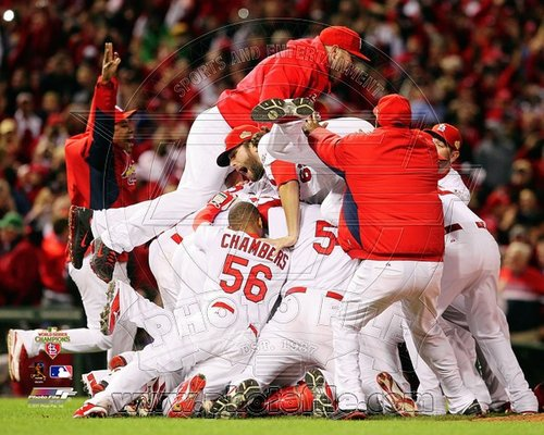 2011 St Louis Cardinals MLB 8x10 Photograph World Series Busch Stadium Celebration #2